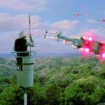 Man Up a Pole: A Star Wars Story